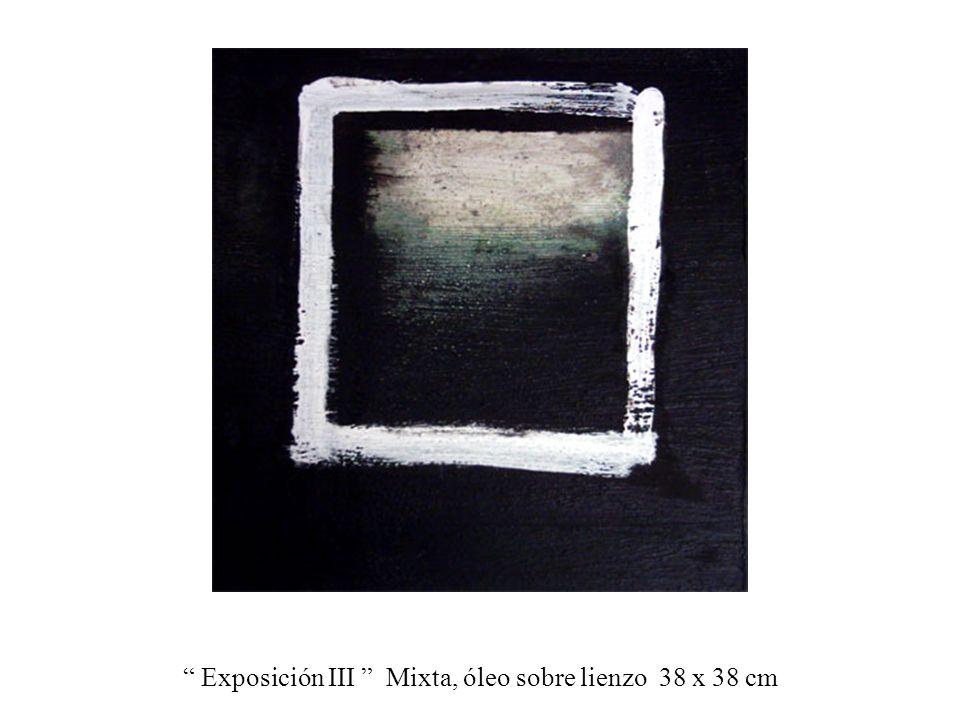Exposición III Mixta, óleo sobre lienzo 38 x 38 cm