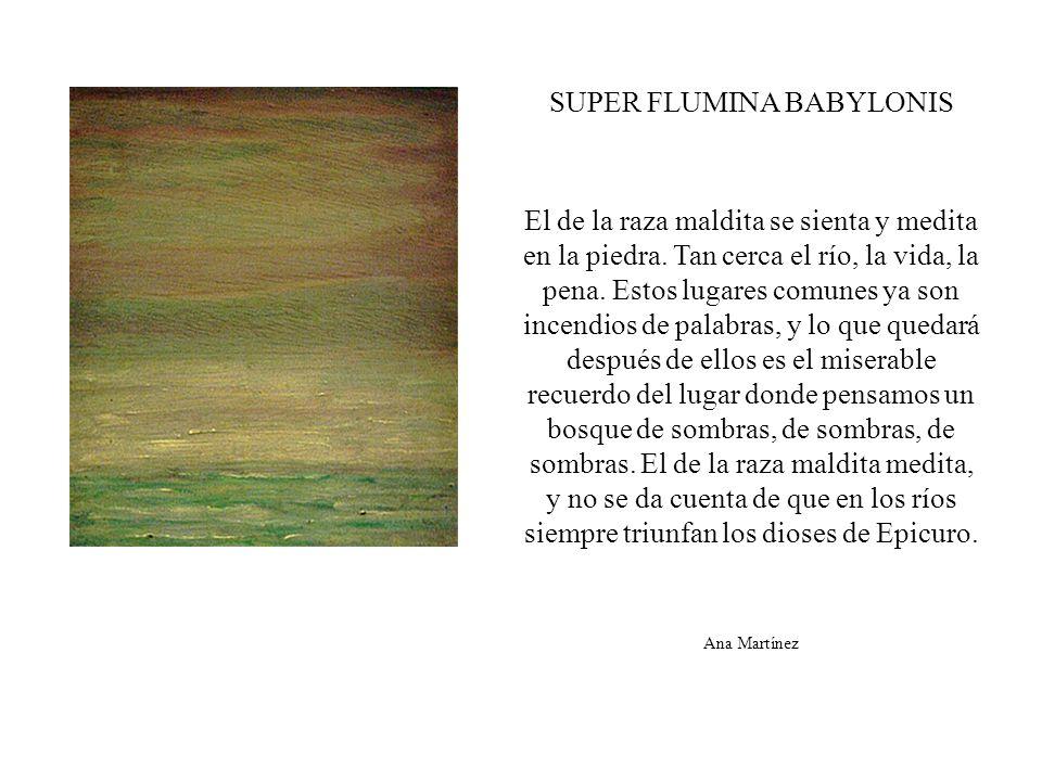 Modelo Mixta, óleo sobre lienzo 38 x 38 cm