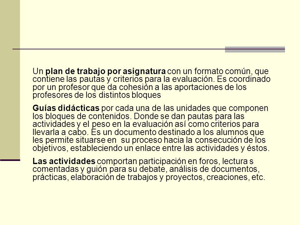 Un plan de trabajo por asignatura con un formato común, que contiene las pautas y criterios para la evaluación.
