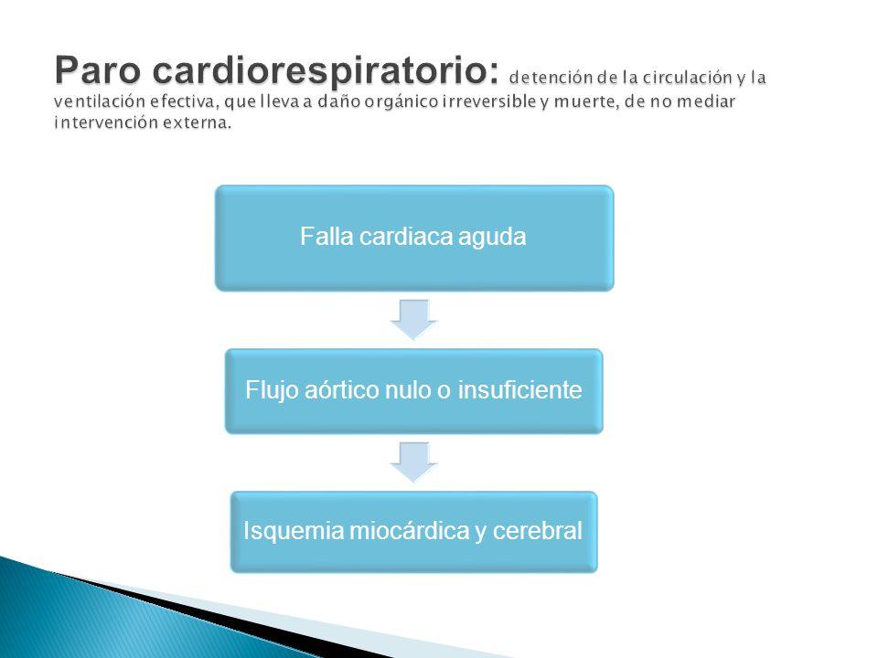 Falla cardiaca aguda Flujo aórtico nulo o insuficiente Isquemia miocárdica y cerebral