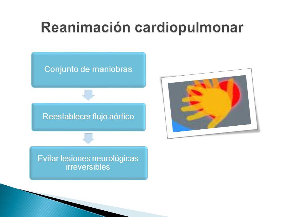 Conjunto de maniobras Reestablecer flujo aórtico Evitar lesiones neurológicas irreversibles