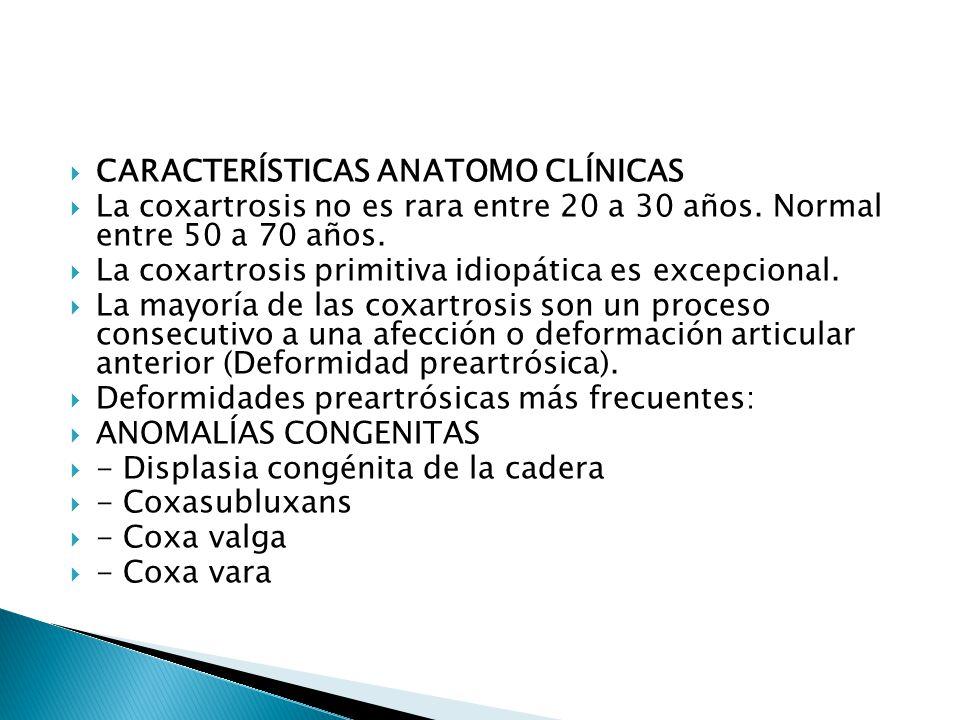 CARACTERÍSTICAS ANATOMO CLÍNICAS La coxartrosis no es rara entre 20 a 30 años.