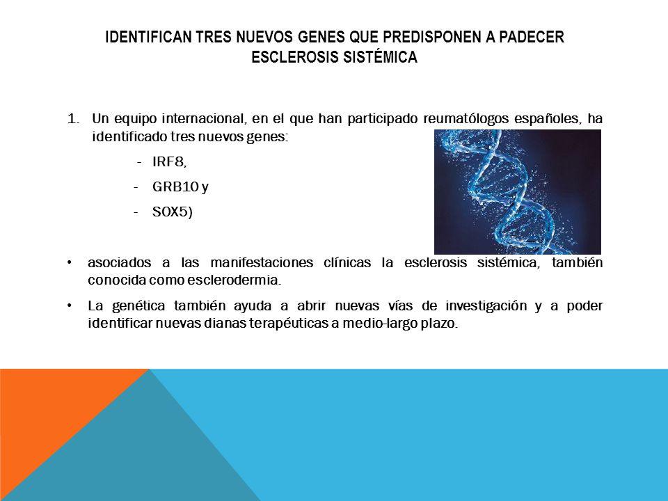 IDENTIFICAN TRES NUEVOS GENES QUE PREDISPONEN A PADECER ESCLEROSIS SISTÉMICA 1.Un equipo internacional, en el que han participado reumatólogos español