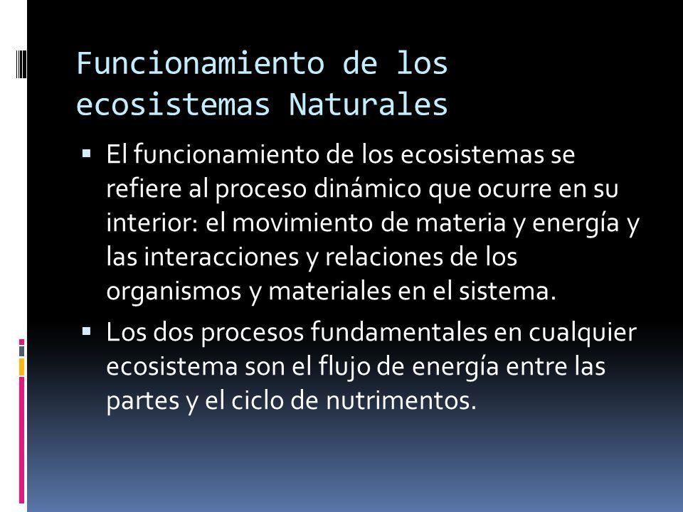 Funcionamiento de los ecosistemas Naturales El funcionamiento de los ecosistemas se refiere al proceso dinámico que ocurre en su interior: el movimiento de materia y energía y las interacciones y relaciones de los organismos y materiales en el sistema.