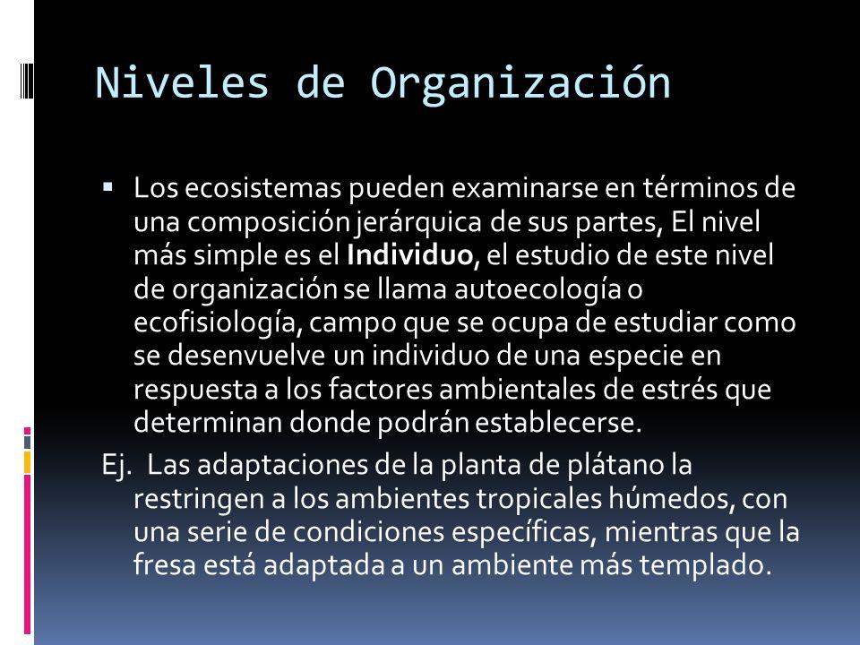 Niveles de Organización Los ecosistemas pueden examinarse en términos de una composición jerárquica de sus partes, El nivel más simple es el Individuo