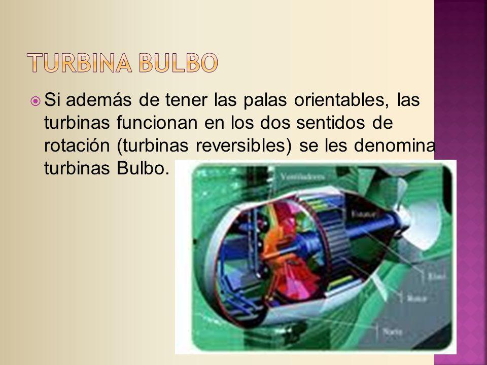 Si además de tener las palas orientables, las turbinas funcionan en los dos sentidos de rotación (turbinas reversibles) se les denomina turbinas Bulbo.