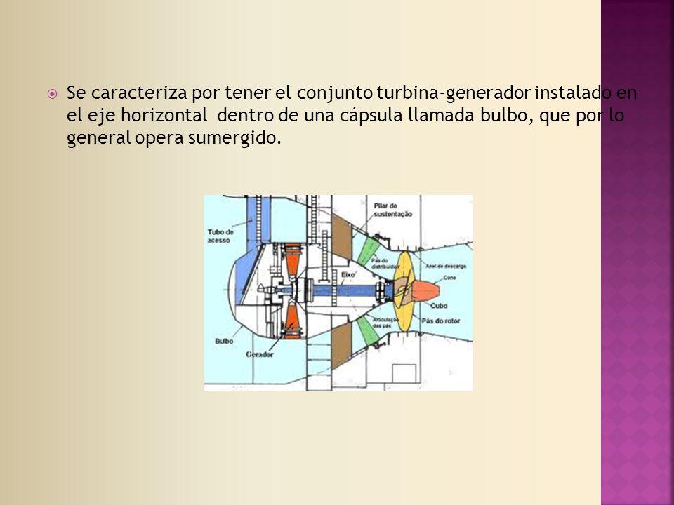 Se caracteriza por tener el conjunto turbina-generador instalado en el eje horizontal dentro de una cápsula llamada bulbo, que por lo general opera sumergido.