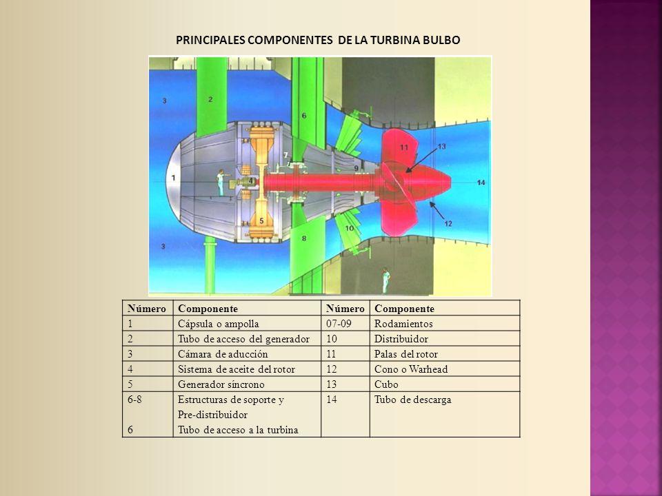 NúmeroComponenteNúmeroComponente 1Cápsula o ampolla07-09Rodamientos 2Tubo de acceso del generador10Distribuidor 3Cámara de aducción11Palas del rotor 4Sistema de aceite del rotor12Cono o Warhead 5Generador síncrono13Cubo 6-8 6 Estructuras de soporte y Pre-distribuidor Tubo de acceso a la turbina 14Tubo de descarga PRINCIPALES COMPONENTES DE LA TURBINA BULBO