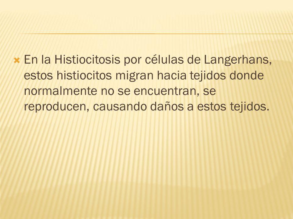 En la Histiocitosis por células de Langerhans, estos histiocitos migran hacia tejidos donde normalmente no se encuentran, se reproducen, causando daño