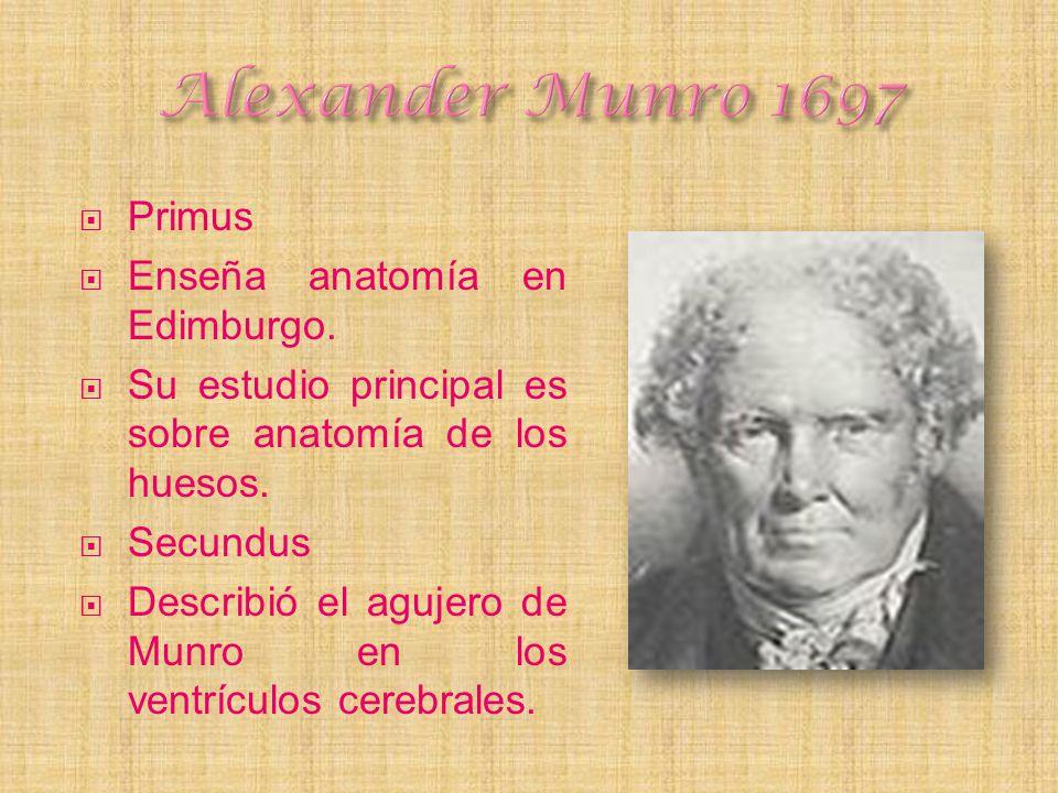 Primus Enseña anatomía en Edimburgo. Su estudio principal es sobre anatomía de los huesos. Secundus Describió el agujero de Munro en los ventrículos c