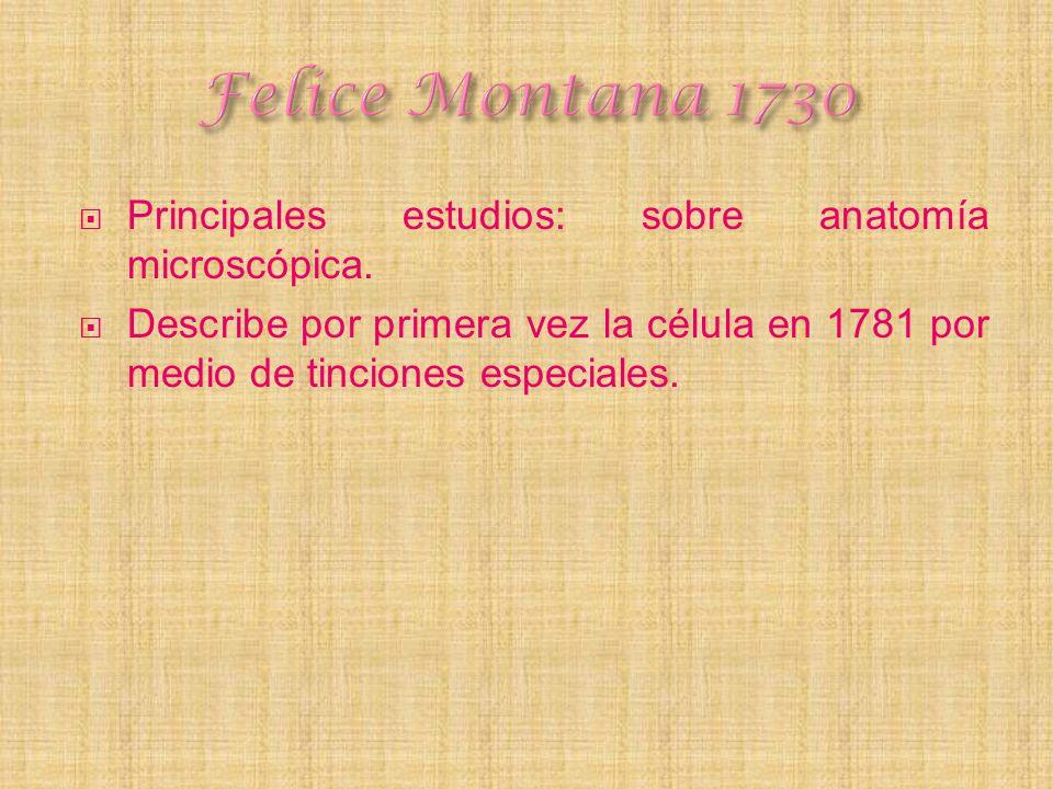 Principales estudios: sobre anatomía microscópica. Describe por primera vez la célula en 1781 por medio de tinciones especiales.