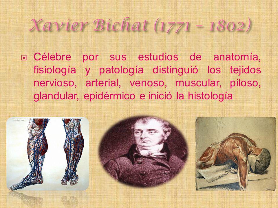 Célebre por sus estudios de anatomía, fisiología y patología distinguió los tejidos nervioso, arterial, venoso, muscular, piloso, glandular, epidérmic