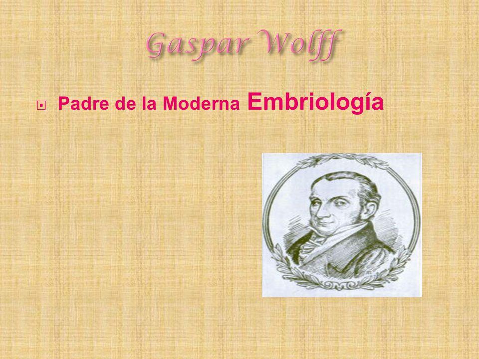 Padre de la Moderna Embriología