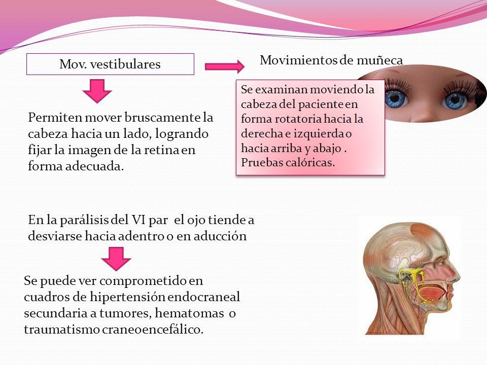 Mov. vestibulares Permiten mover bruscamente la cabeza hacia un lado, logrando fijar la imagen de la retina en forma adecuada. Movimientos de muñeca S