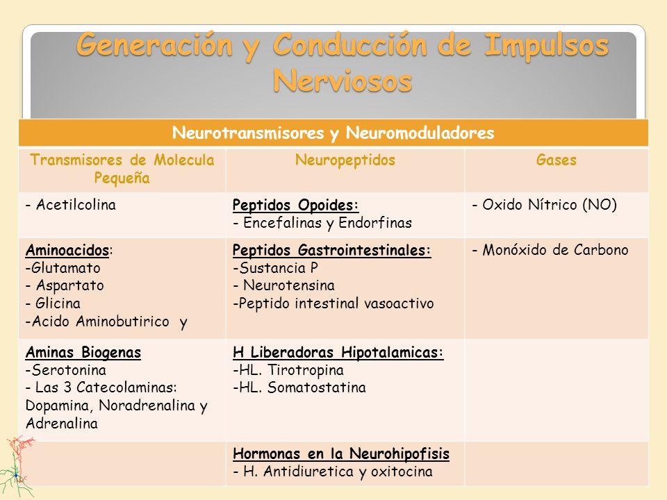 Generación y Conducción de Impulsos Nerviosos Neurotransmisores y Neuromoduladores Transmisores de Molecula Pequeña NeuropeptidosGases - AcetilcolinaP