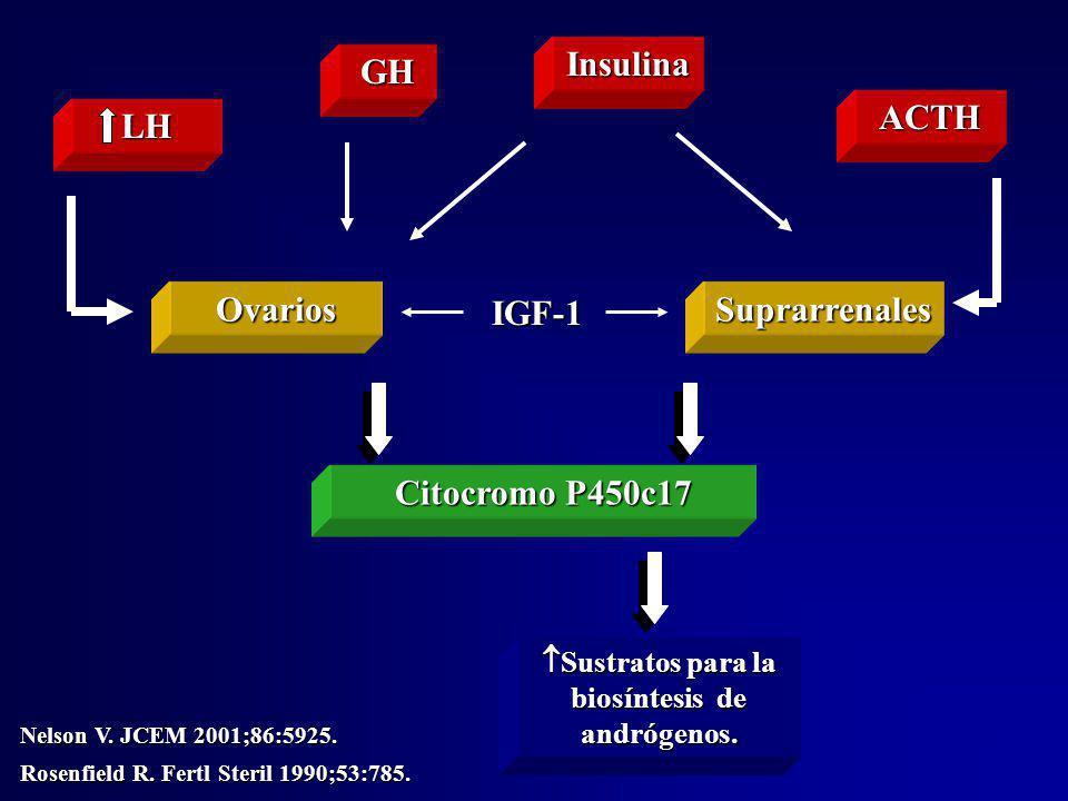 LH Sustratos para la biosíntesis de andrógenos. Sustratos para la biosíntesis de andrógenos. ACTH Insulina Ovarios Citocromo P450c17 Suprarrenales Nel