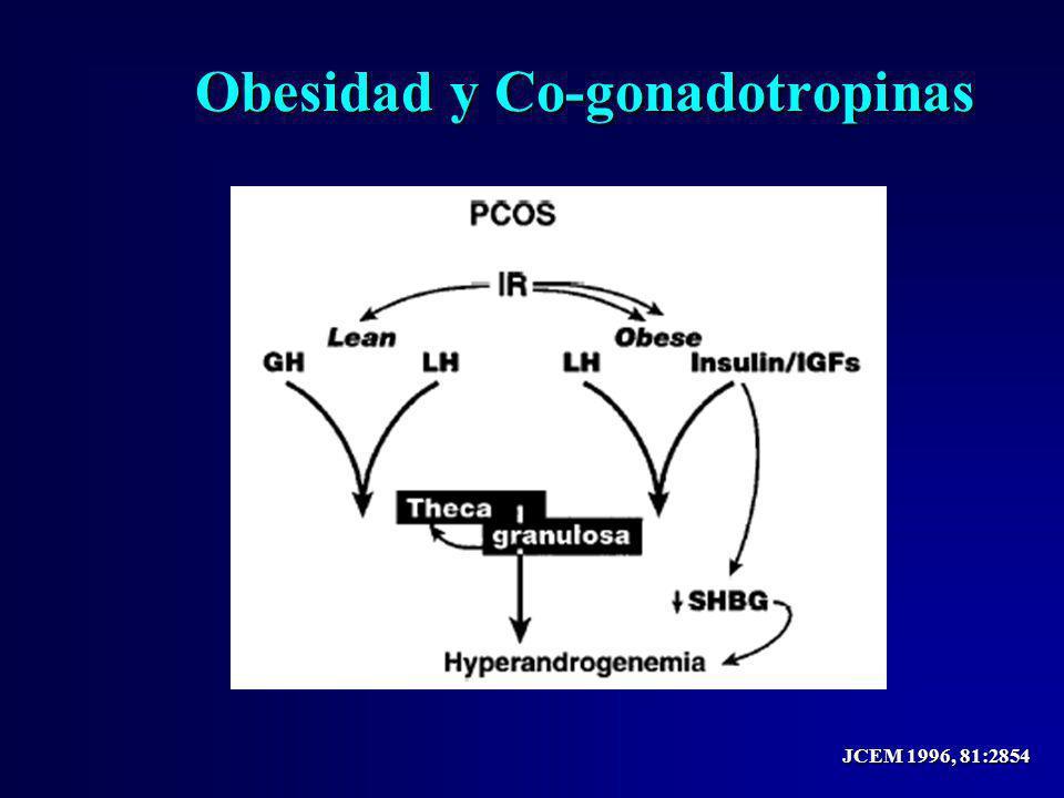 Obesidad y Co-gonadotropinas JCEM 1996, 81:2854