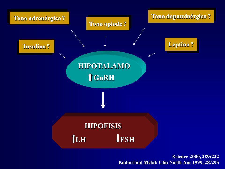 Disregulación hipotálamo-hipofisaria Hipotálamo GnRH GnRH Hipófisis LH FSH GH ACTH LH FSH GH ACTH Ovario EstronaEstradiol Andrógenos Ann Intern Med 2000, 132:989