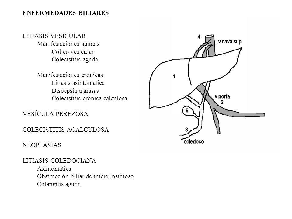 ENFERMEDADES BILIARES LITIASIS VESICULAR Manifestaciones agudas Cólico vesicular Colecistitis aguda Manifestaciones crónicas Litiasis asintomática Dispepsia a grasas Colecistitis crónica calculosa VESÍCULA PEREZOSA COLECISTITIS ACALCULOSA NEOPLASIAS LITIASIS COLEDOCIANA Asintomática Obstrucción biliar de inicio insidioso Colangitis aguda