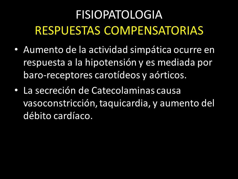 FISIOPATOLOGIA RESPUESTAS COMPENSATORIAS Aumento de la actividad simpática ocurre en respuesta a la hipotensión y es mediada por baro-receptores carot