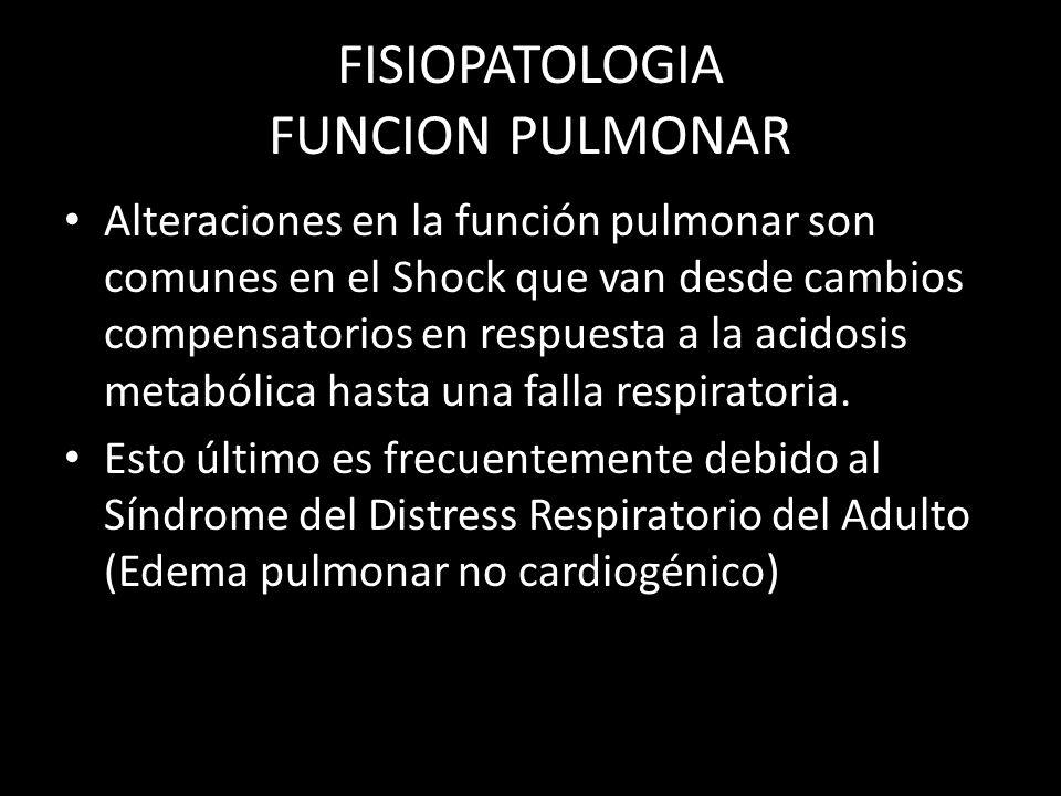 FISIOPATOLOGIA FUNCION PULMONAR Alteraciones en la función pulmonar son comunes en el Shock que van desde cambios compensatorios en respuesta a la aci