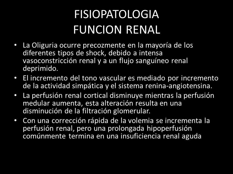 FISIOPATOLOGIA FUNCION RENAL La Oliguria ocurre precozmente en la mayoría de los diferentes tipos de shock, debido a intensa vasoconstricción renal y