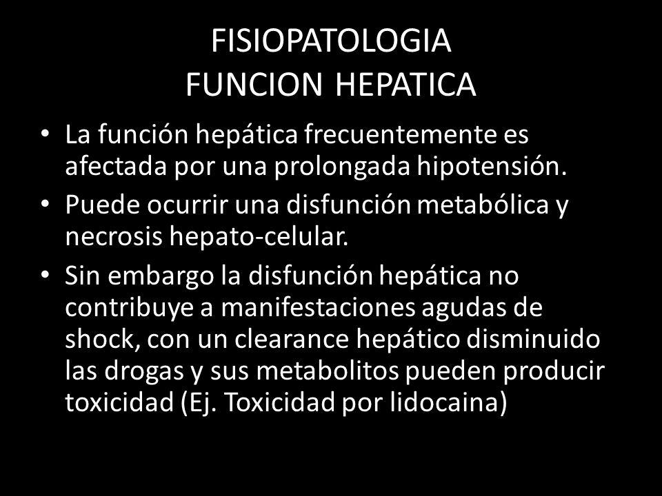 FISIOPATOLOGIA FUNCION HEPATICA La función hepática frecuentemente es afectada por una prolongada hipotensión. Puede ocurrir una disfunción metabólica