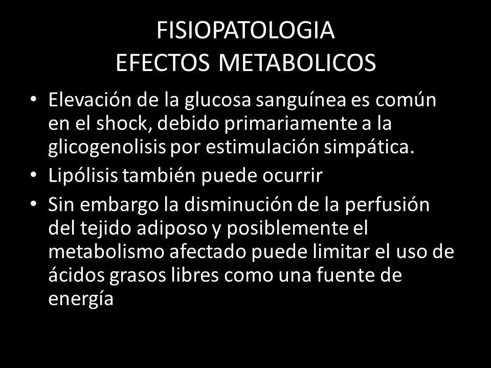 FISIOPATOLOGIA EFECTOS METABOLICOS Elevación de la glucosa sanguínea es común en el shock, debido primariamente a la glicogenolisis por estimulación s