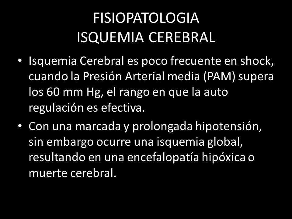 FISIOPATOLOGIA ISQUEMIA CEREBRAL Isquemia Cerebral es poco frecuente en shock, cuando la Presión Arterial media (PAM) supera los 60 mm Hg, el rango en