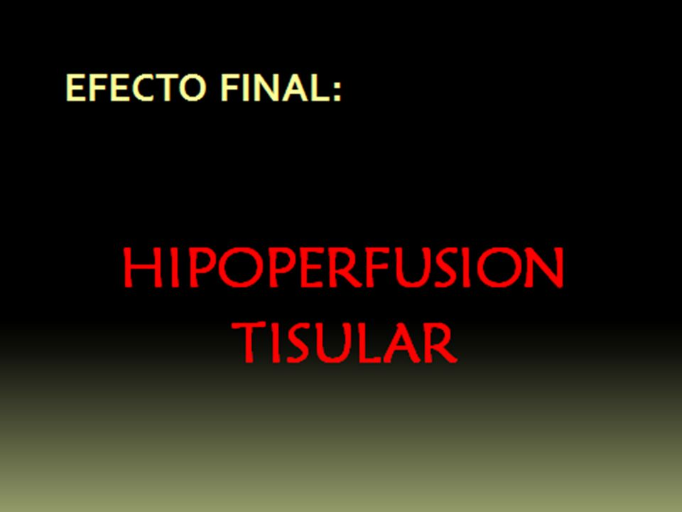 FISIOPATOLOGIA FUNCION HEPATICA La función hepática frecuentemente es afectada por una prolongada hipotensión.