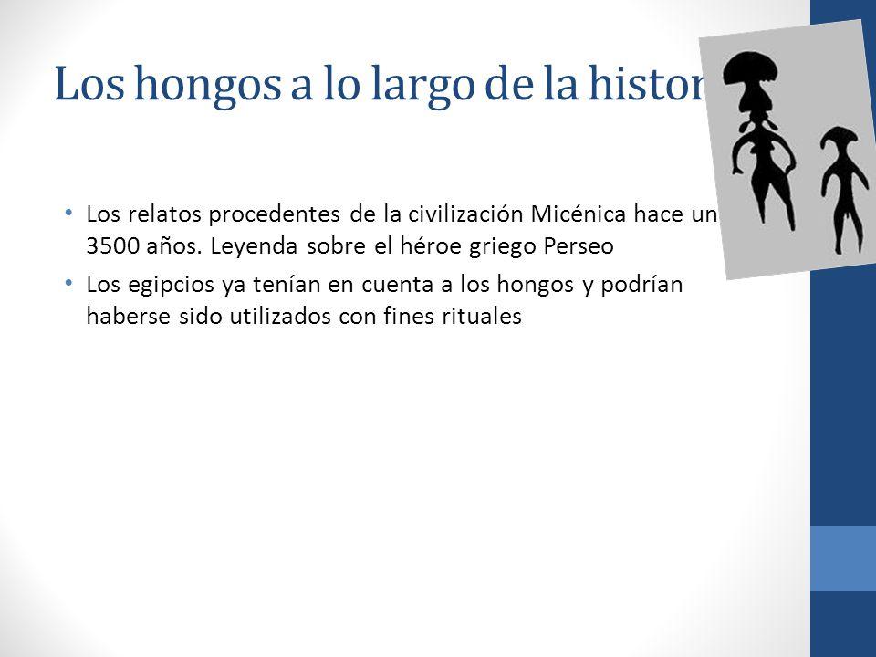 Los hongos a lo largo de la historia. Los relatos procedentes de la civilización Micénica hace unos 3500 años. Leyenda sobre el héroe griego Perseo Lo