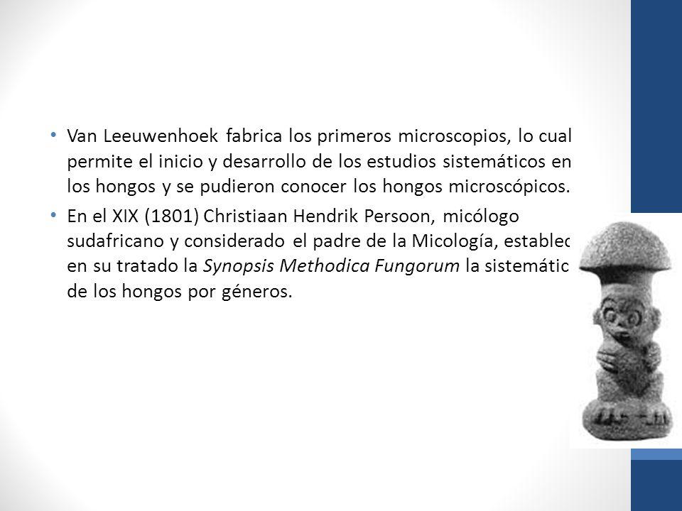 Van Leeuwenhoek fabrica los primeros microscopios, lo cual permite el inicio y desarrollo de los estudios sistemáticos en los hongos y se pudieron con