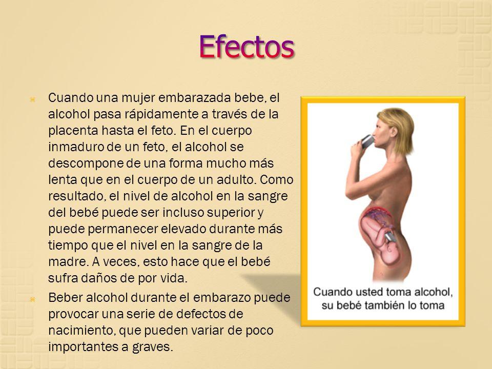 Cuando una mujer embarazada bebe, el alcohol pasa rápidamente a través de la placenta hasta el feto. En el cuerpo inmaduro de un feto, el alcohol se d