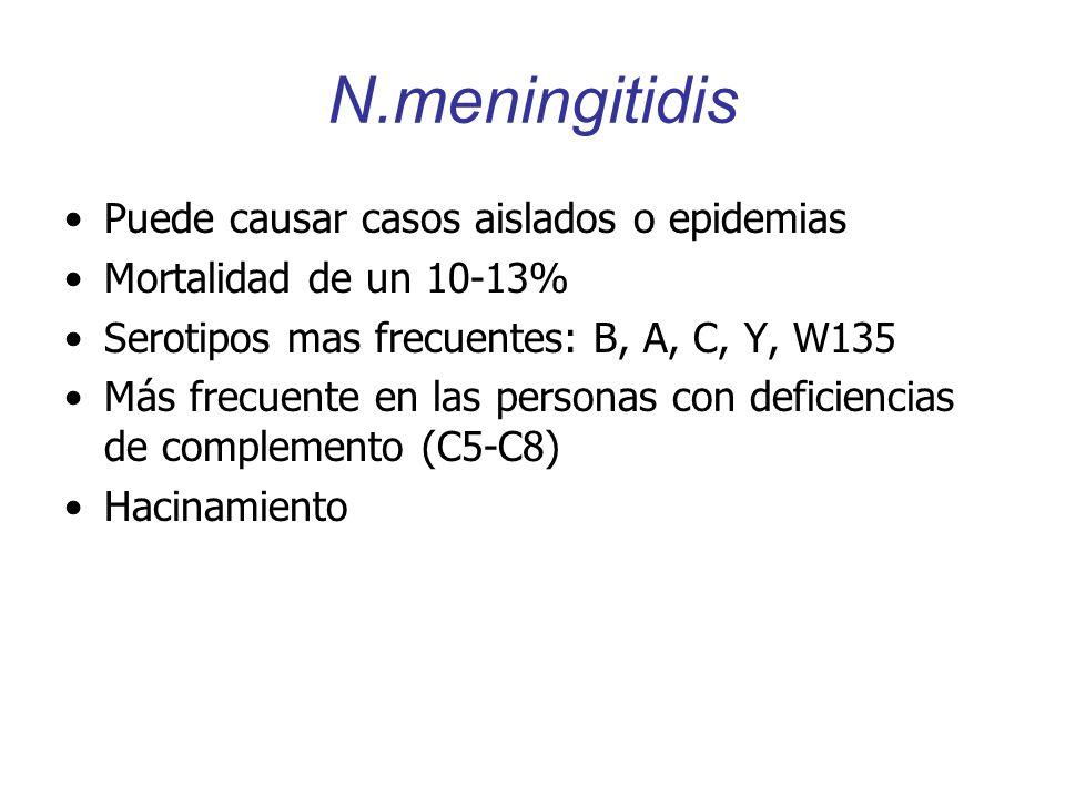 N.meningitidis Puede causar casos aislados o epidemias Mortalidad de un 10-13% Serotipos mas frecuentes: B, A, C, Y, W135 Más frecuente en las persona