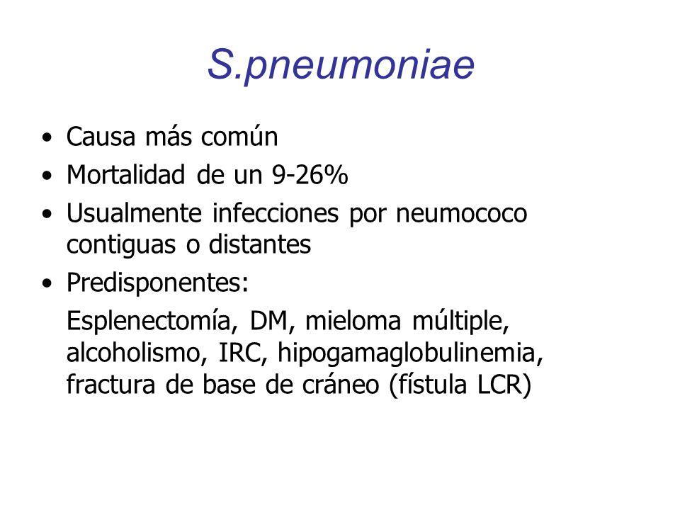 S.pneumoniae Causa más común Mortalidad de un 9-26% Usualmente infecciones por neumococo contiguas o distantes Predisponentes: Esplenectomía, DM, miel
