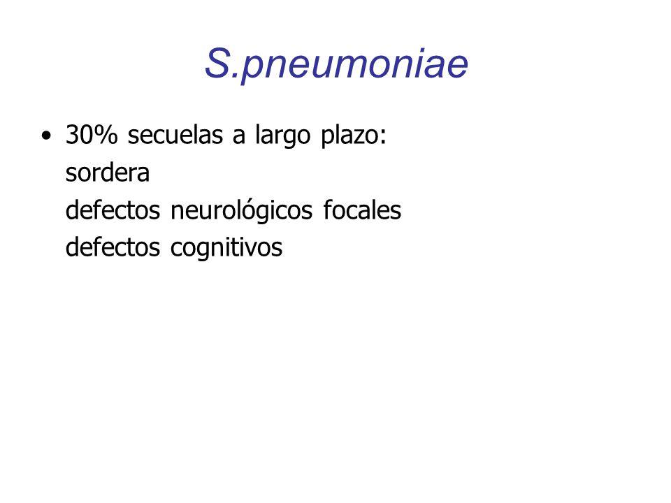 S.pneumoniae 30% secuelas a largo plazo: sordera defectos neurológicos focales defectos cognitivos