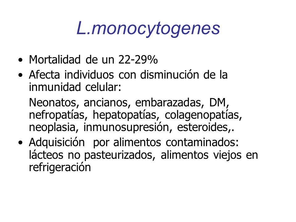 L.monocytogenes Mortalidad de un 22-29% Afecta individuos con disminución de la inmunidad celular: Neonatos, ancianos, embarazadas, DM, nefropatías, h