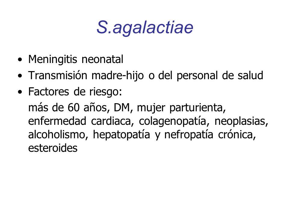 S.agalactiae Meningitis neonatal Transmisión madre-hijo o del personal de salud Factores de riesgo: más de 60 años, DM, mujer parturienta, enfermedad