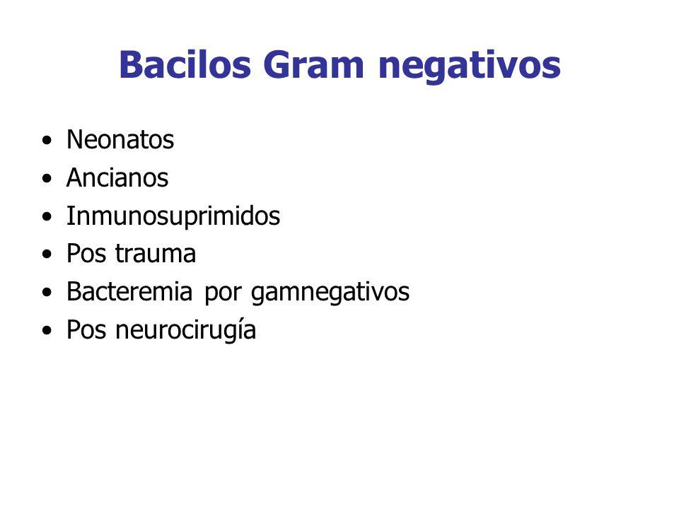 Bacilos Gram negativos Neonatos Ancianos Inmunosuprimidos Pos trauma Bacteremia por gamnegativos Pos neurocirugía