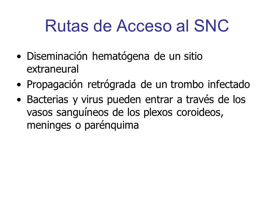 Rutas de Acceso al SNC Diseminación hematógena de un sitio extraneural Propagación retrógrada de un trombo infectado Bacterias y virus pueden entrar a