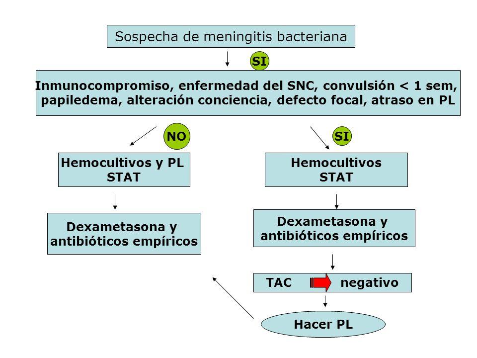 Sospecha de meningitis bacteriana Inmunocompromiso, enfermedad del SNC, convulsión < 1 sem, papiledema, alteración conciencia, defecto focal, atraso e