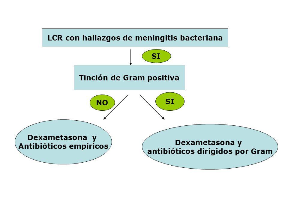 LCR con hallazgos de meningitis bacteriana SI Tinción de Gram positiva NO SI Dexametasona y Antibióticos empíricos Dexametasona y antibióticos dirigid