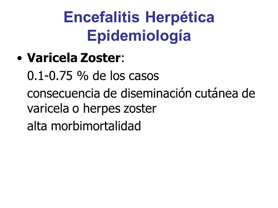 Encefalitis Herpética Epidemiología Varicela Zoster: 0.1-0.75 % de los casos consecuencia de diseminación cutánea de varicela o herpes zoster alta mor
