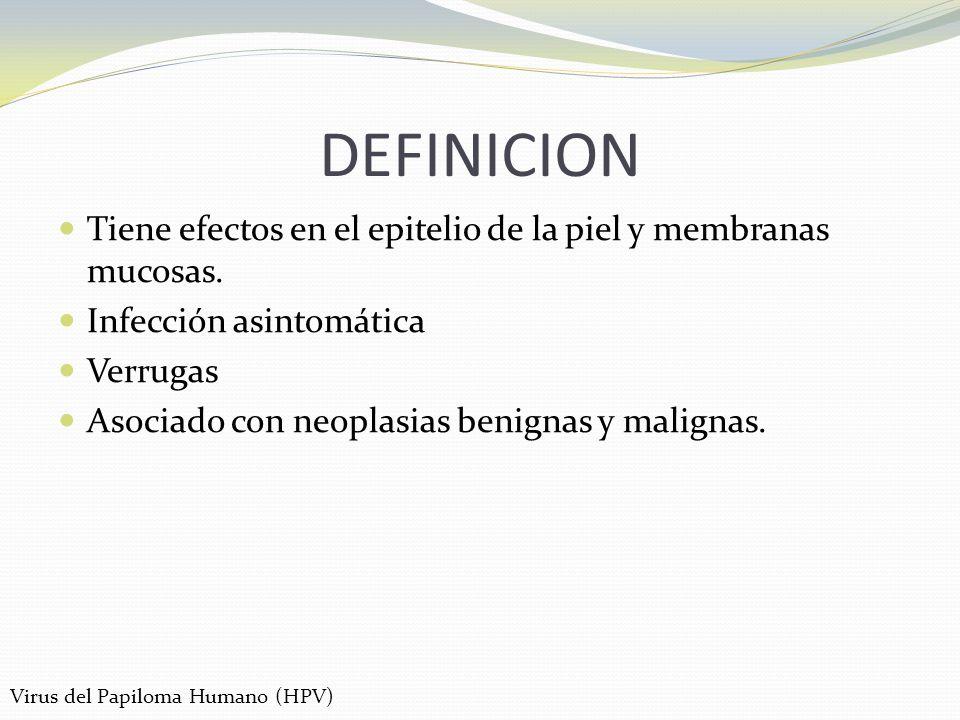 DEFINICION Tiene efectos en el epitelio de la piel y membranas mucosas. Infección asintomática Verrugas Asociado con neoplasias benignas y malignas. V