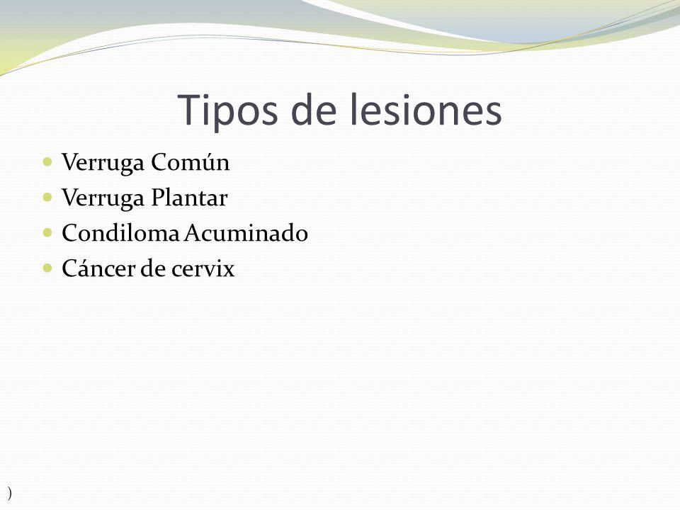 Tipos de lesiones Verruga Común Verruga Plantar Condiloma Acuminado Cáncer de cervix )