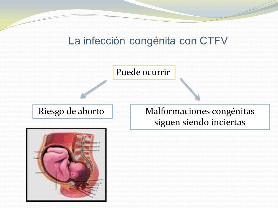La infección congénita con CTFV Puede ocurrir Riesgo de abortoMalformaciones congénitas siguen siendo inciertas