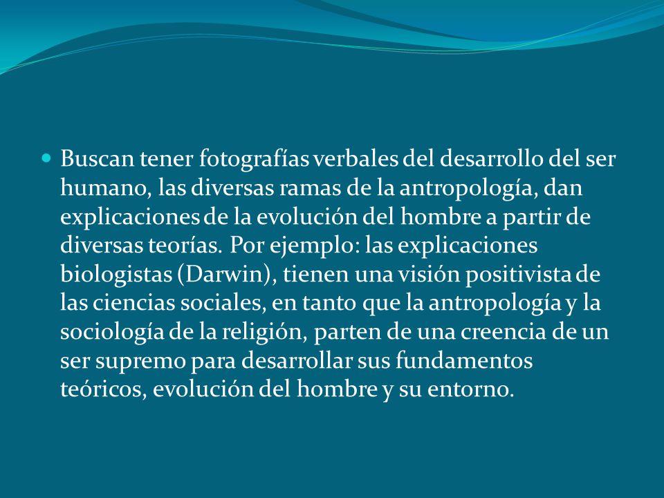 Buscan tener fotografías verbales del desarrollo del ser humano, las diversas ramas de la antropología, dan explicaciones de la evolución del hombre a