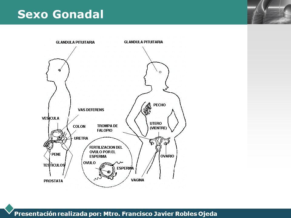 LOGO Presentación realizada por: Mtro. Francisco Javier Robles Ojeda Sexo Gonadal