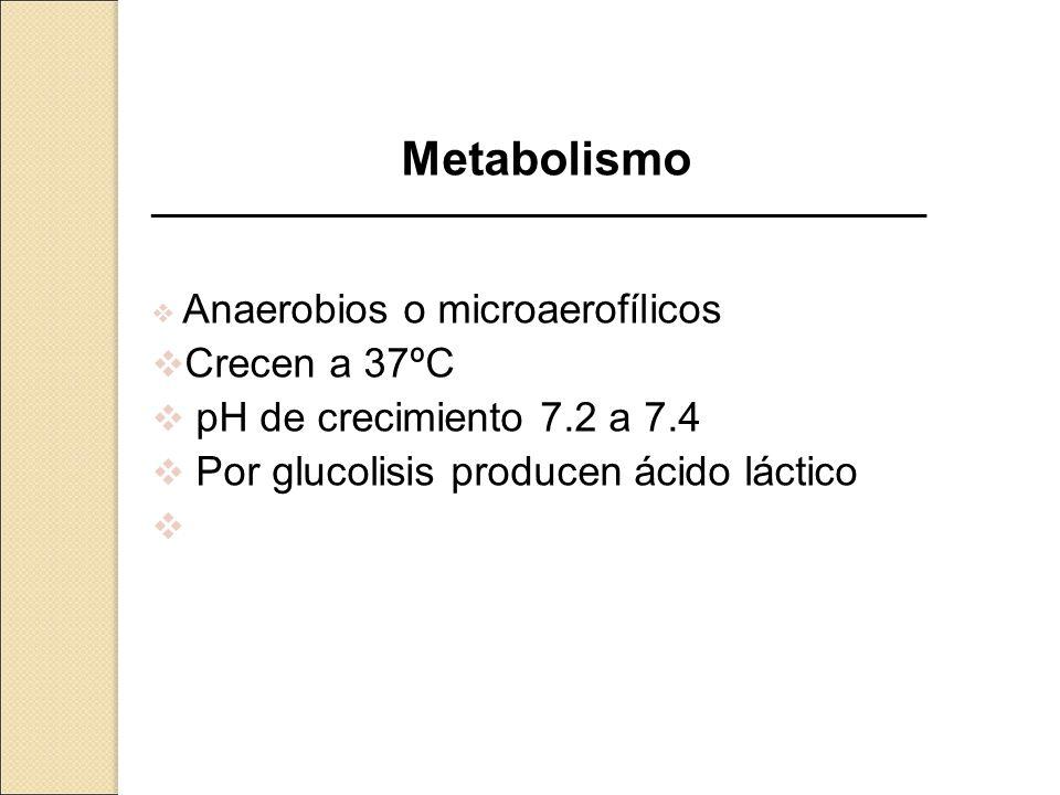 Metabolismo _____________________________________________________ Anaerobios o microaerofílicos Crecen a 37ºC pH de crecimiento 7.2 a 7.4 Por glucolis