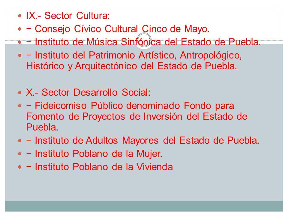 IX.- Sector Cultura: Consejo Cívico Cultural Cinco de Mayo.